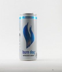 Burn energy drink - Canette Burn - burn day 250ml (1)