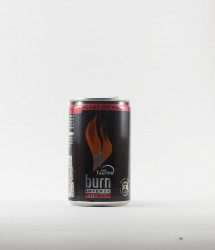 Burn energy drink - Canette Burn - mini burn 150ml (1)